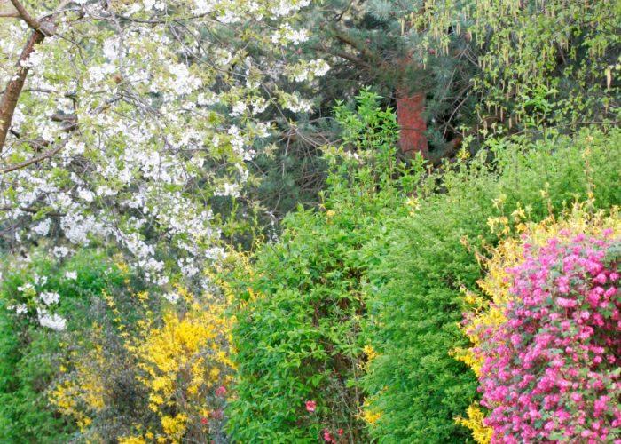 Haies Fleuries La Baule Guérande Pornichet Saint Nazaire