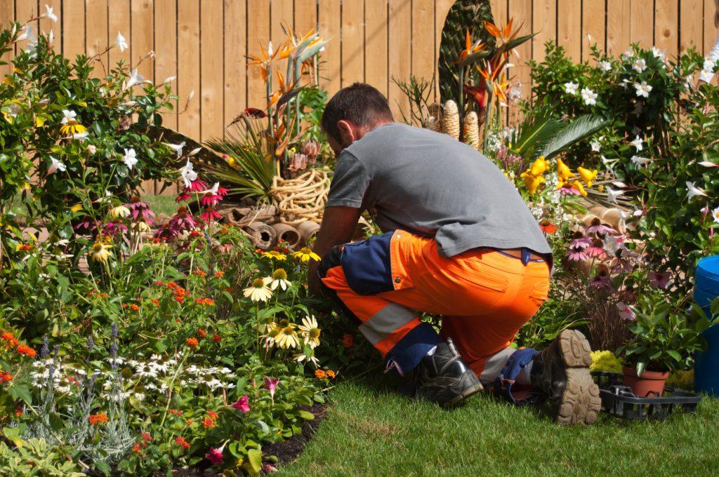 Entretien jardin La Baule Guérande Pornichet